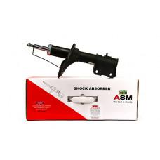 ASM FR462195 = A21-2905010